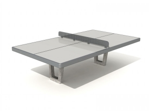 Stationary Ping Pong Table